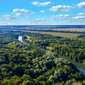 อเมซอนปอดของโลกป่าของเรา
